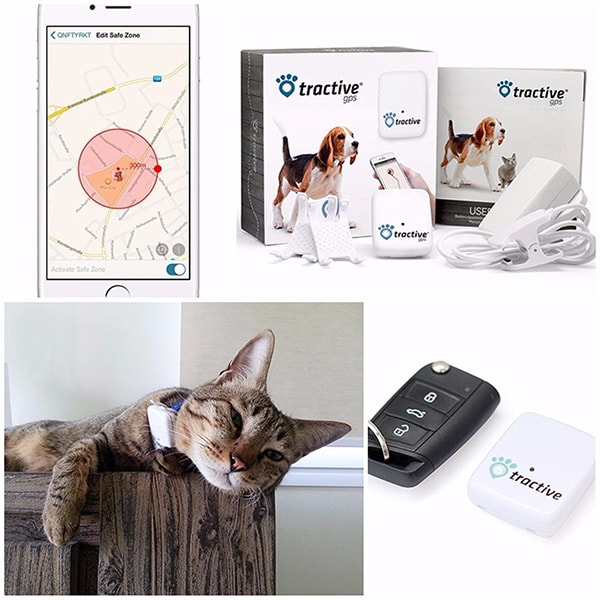 Tractive: Il Localizzatore GPS per Animali con app gratuita per smartphone